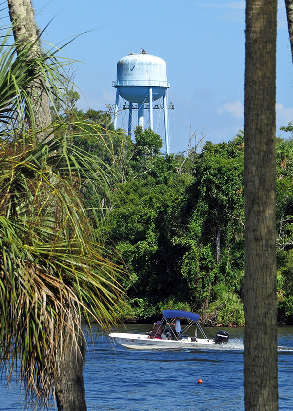 This week at the Old Homosassa Water Tower